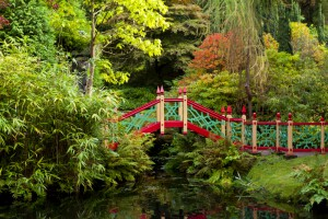 Bridge over the pool in China in autumn at Biddulph Grange Garden, Staffordshire.