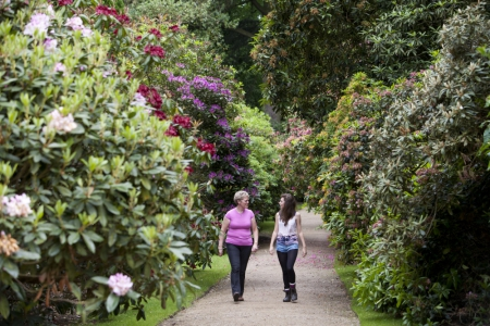 Enjoy the delightful walled garden, parkland and woodland at the National Trust's Hare Hill in Chesihire.