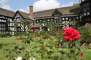 Summer view of the garden in full bloom with the west elevation of Gawsworth Old Hall in the background. Dating from the 15th century, the Tudor style black and white timbered framed historic manor house is Grade I listed. If required, it may be possible to arrange property release for this image.